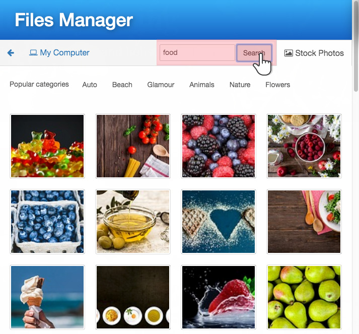 An easy to use File Manager
